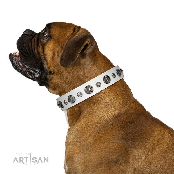 Stylish genuine leather dog collar with rust-proof fittings
