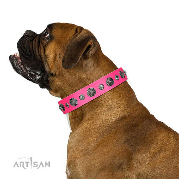 Comfortable genuine leather dog collar with rust resistant buckle