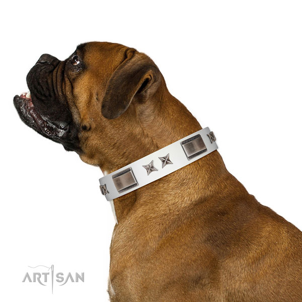 Unusual collar of natural leather for your attractive four-legged friend