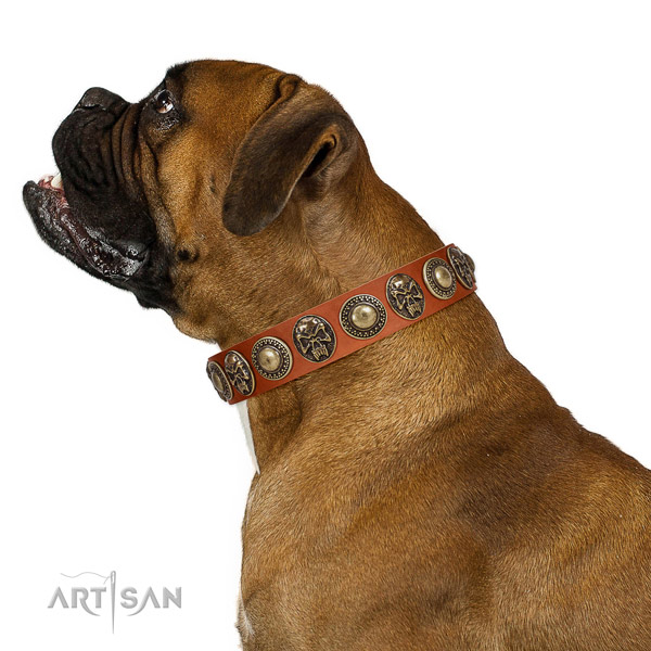 Fashionable leather collar for your impressive dog