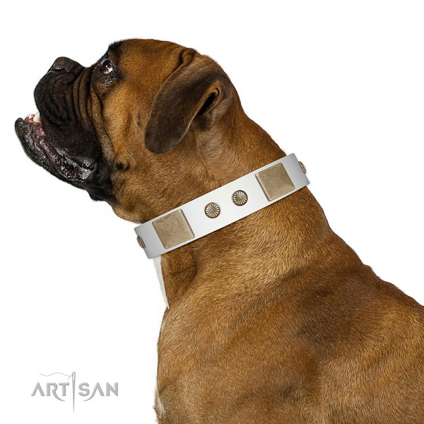 Strong hardware on full grain genuine leather dog collar for everyday use