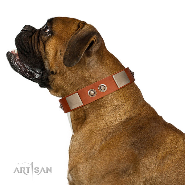 Rust-proof traditional buckle on full grain leather dog collar for everyday walking