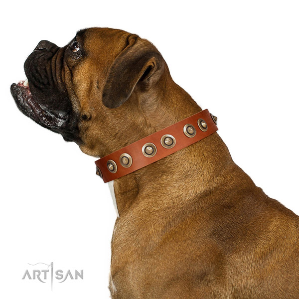Comfy wearing dog collar of natural leather with stylish design embellishments