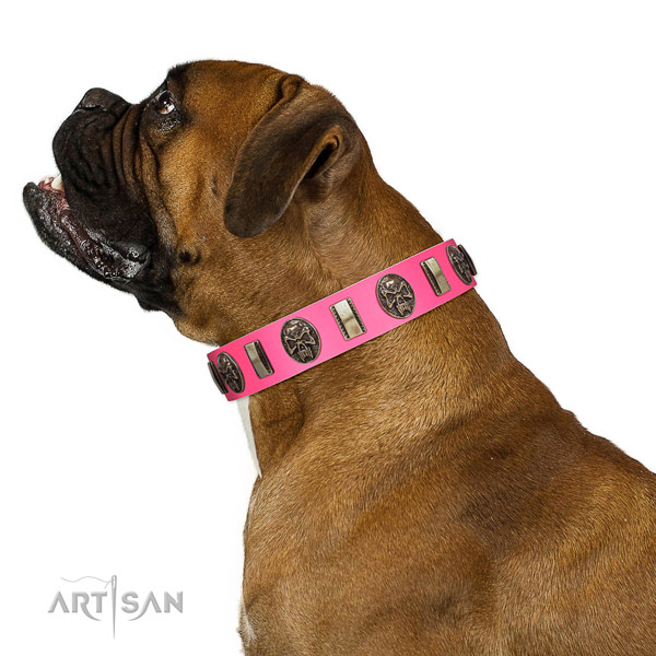 Rust resistant fittings on leather dog collar for walking