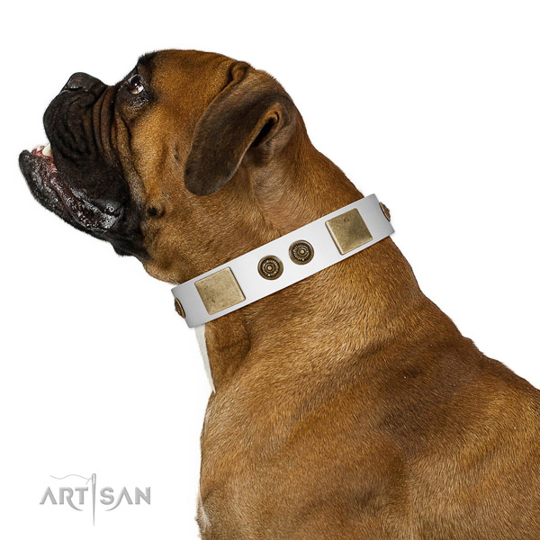 Inimitable dog collar made for your stylish four-legged friend