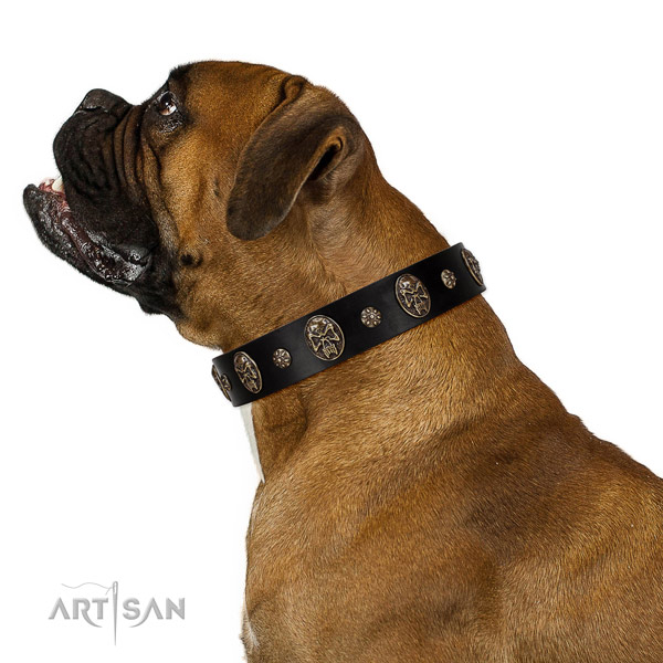 Comfy wearing dog collar of leather with amazing decorations