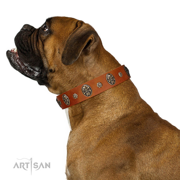 Comfortable wearing dog collar of genuine leather with unusual decorations