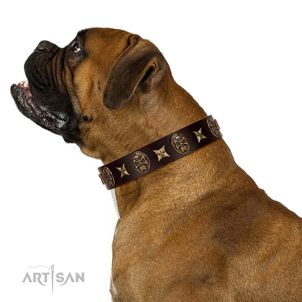 Basic training dog collar of leather with amazing adornments