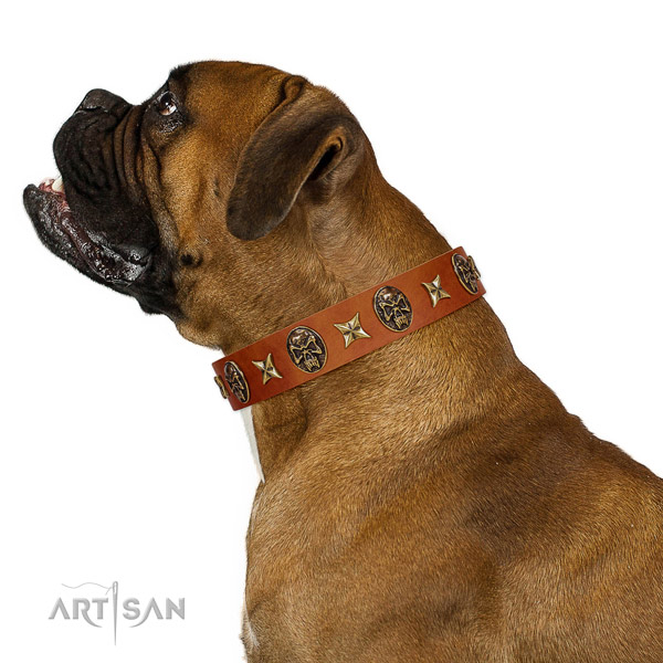 Incredible genuine leather dog collar with studs