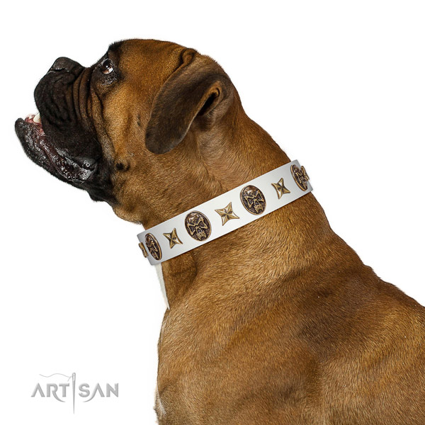 Easy wearing dog collar created for your beautiful dog