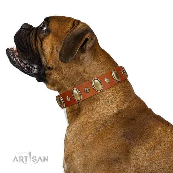Best quality full grain natural leather dog collar with rust resistant D-ring