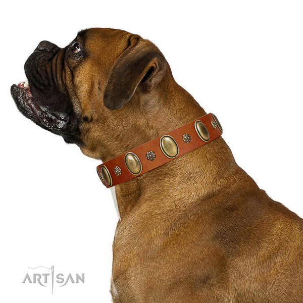 Easy wearing quality full grain natural leather dog collar with adornments