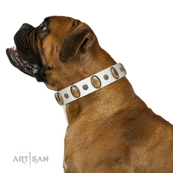 Daily walking top rate full grain natural leather dog collar with studs