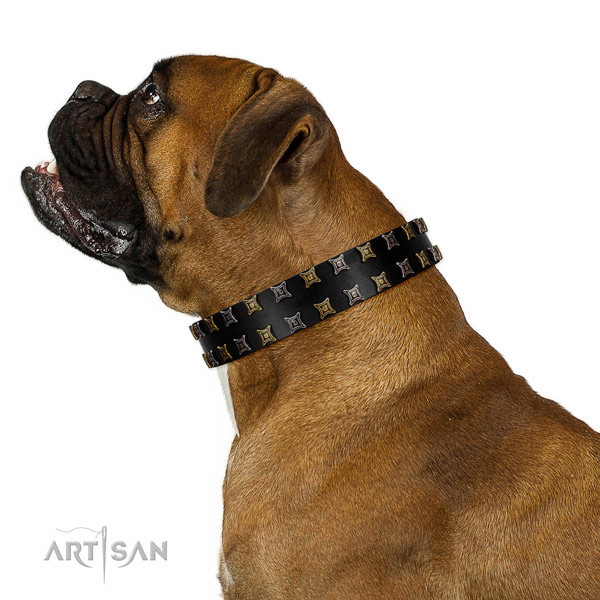 Top notch natural leather dog collar with studs for your dog