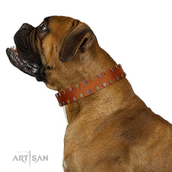 Daily use gentle to touch natural leather dog collar with studs