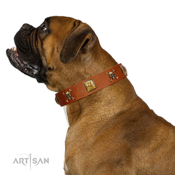 Unique genuine leather dog collar with rust resistant adornments