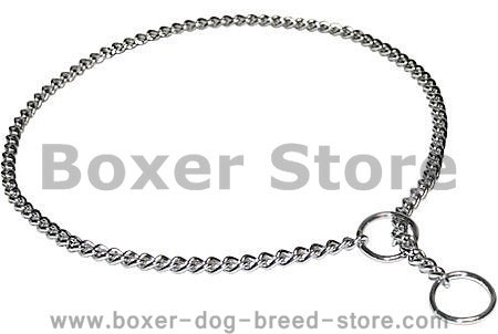 Boxer Chain Leash for Dog Shows