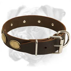 Boxer collar with durable D-ring