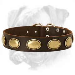 Practical leather collar
