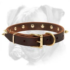 Leather collar with solid D-ring for leash attachment