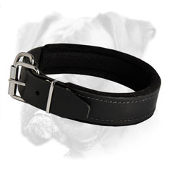 Perfect for everyday use leather collar