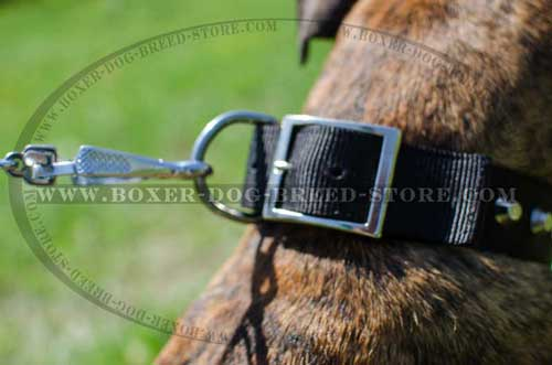 Comfortable nylon dog collar