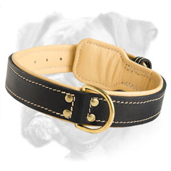 Non-toxic leather collar for everyday use