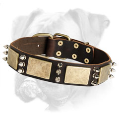 Fabulous leather collar