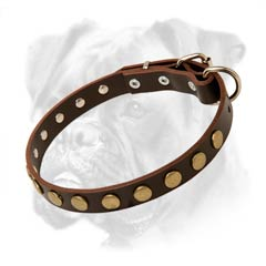 Collar made of authentic leather