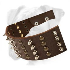 Fabulous leather collar for active dogs