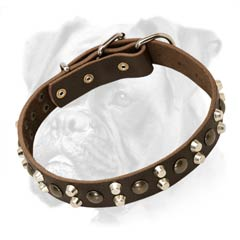 Optional leather dog collar for Boxer