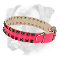 Extraordinary pink leather collar for she-Boxer