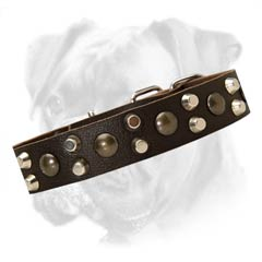 High quality leather collar skillfully decorated