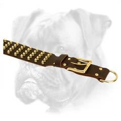 Royal quality leather collar