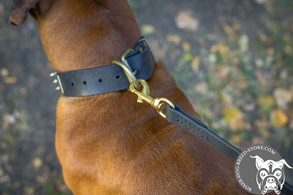 Leather Boxer collar with brass buckle and D-ring