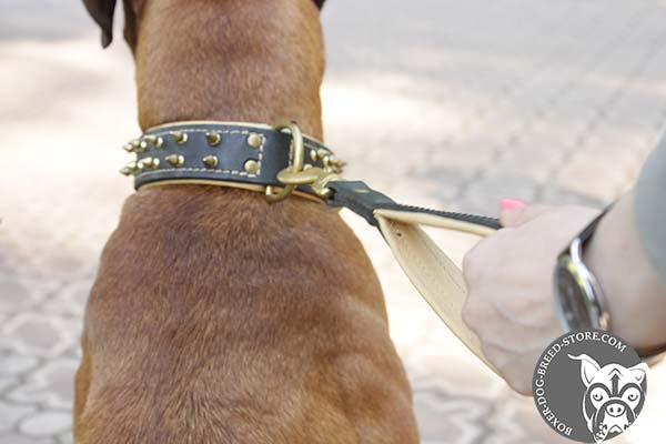 Dependable Boxer collar with brass D-ring