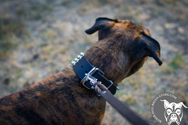 Leather Boxer collar with dependable hardware