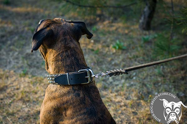 Easy adjustable Boxer collar