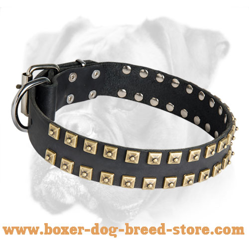 Comfortable Leather Collar With Brass Studs for Boxer