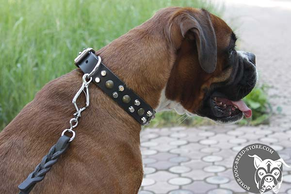 Luxury Boxer collar with studs and pyramids