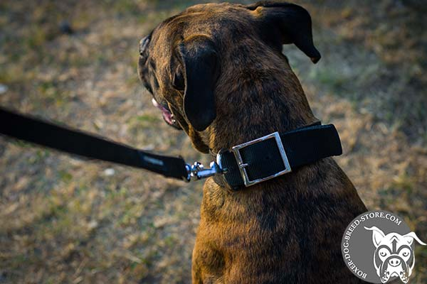 Nylon Boxer collar with nickel plated buckle