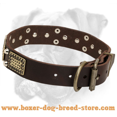 Extra Wide Boxer Leather Collar With Vintage Plates