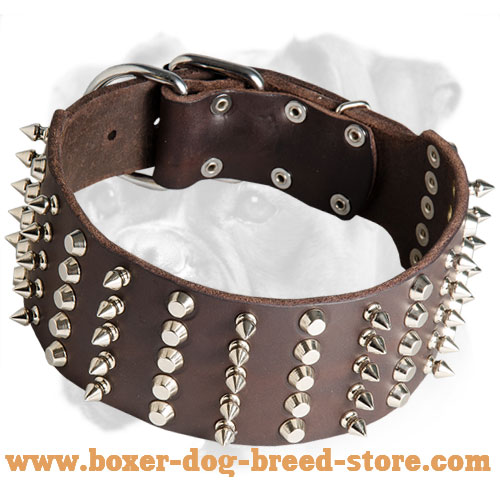 Extra Wide Leather Spiked and Studded Collar for Boxer