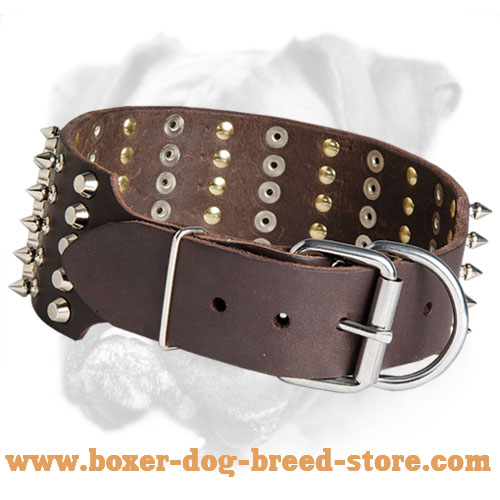 Spikes and Studs Decorate Leather Boxer Collar