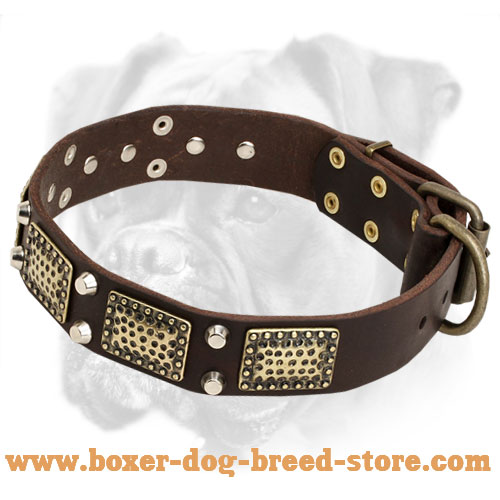 Elegant Leather Collar Decorated With Plates
