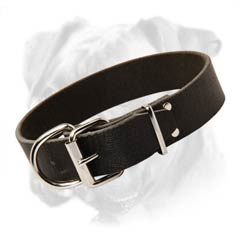 Safe and reliable collar for your Boxer