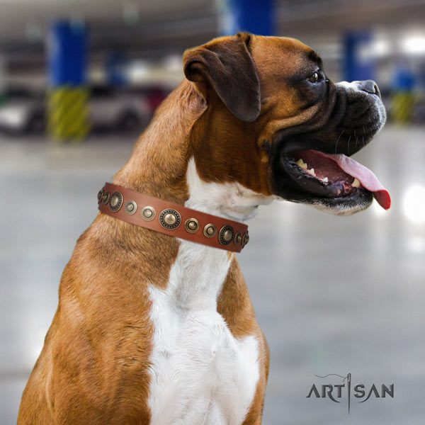 Boxer easy wearing full grain leather collar with corrosion proof buckle