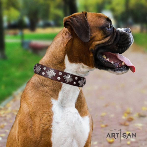 Boxer unusual full grain leather collar with rust resistant fittings
