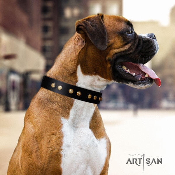 Boxer exquisite full grain genuine leather collar with rust resistant traditional buckle
