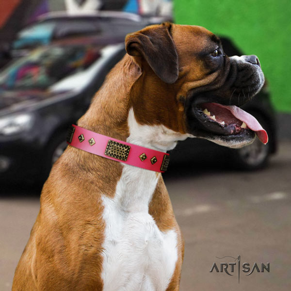 Boxer embellished full grain leather collar with corrosion proof d-ring